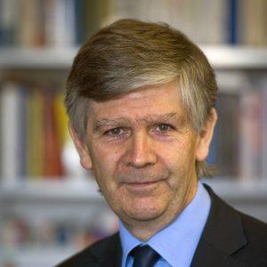 Representante del Secretario General de la ONU sobre los Derechos Humanos de los Desplazados Internos