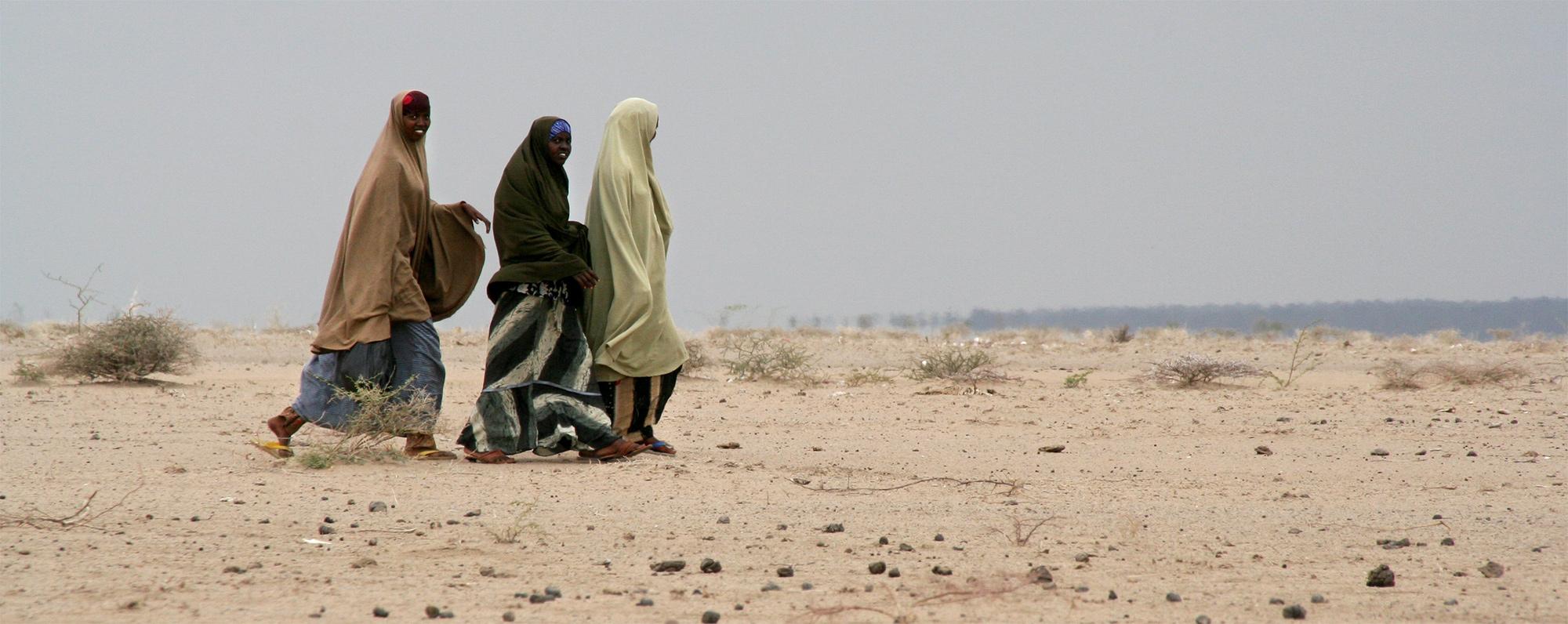 ECODES Convocael Simposio Migraciones Climáticas