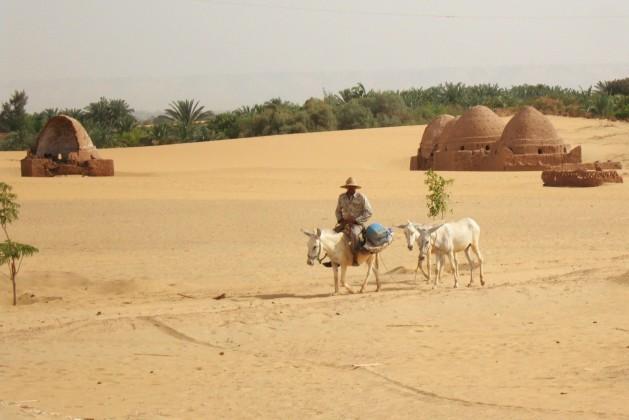 Las Zonas De Medio Oriente, En Peligro De Ser Inhabitables Por El Extremo Calor Y La Falta De Precipitaciones