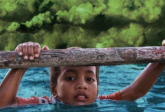 Niño Agarrado A Un árbol Mientras Sube El Agua