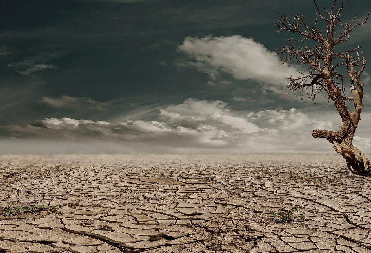 Las olas de calor aumentarán si las emisiones de gases contminantes no se reducen drásticamente