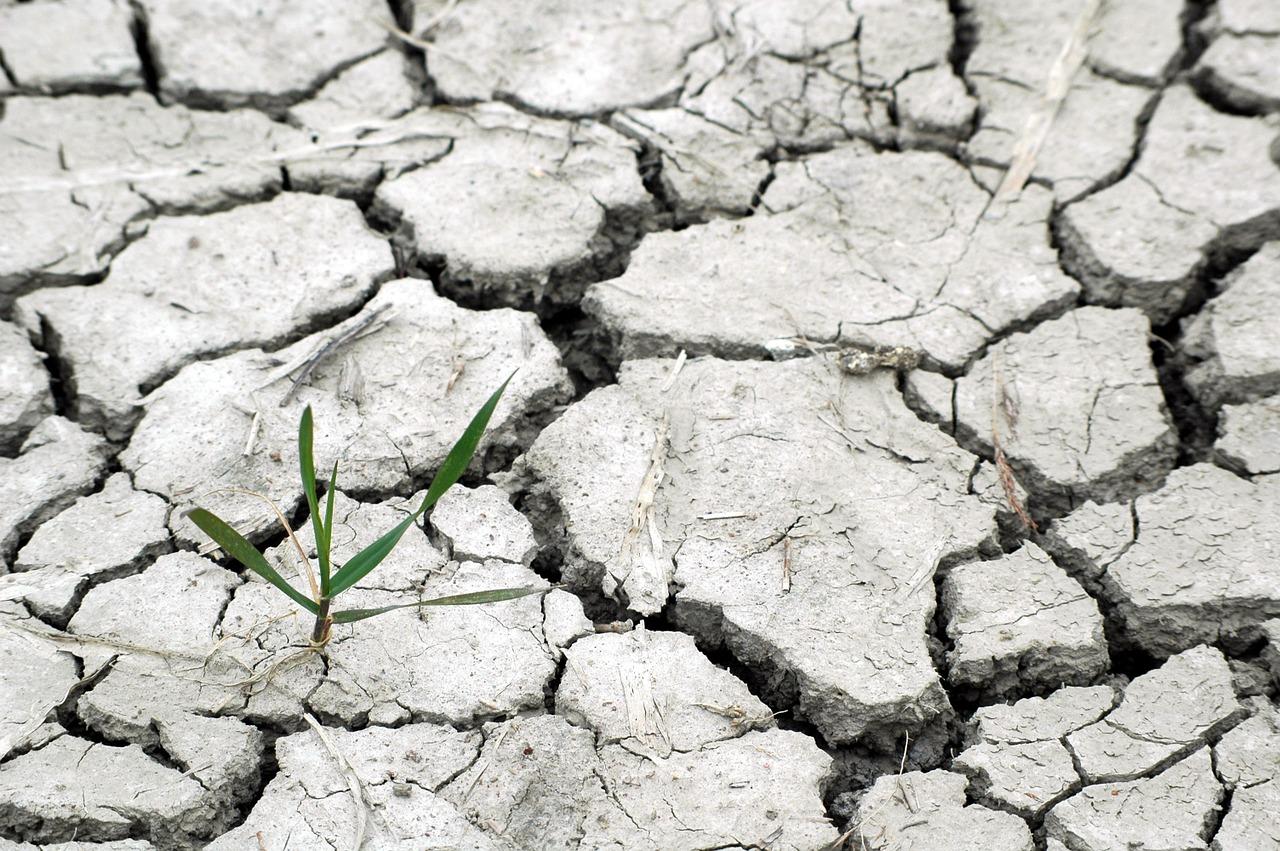 La Sequía En 2017